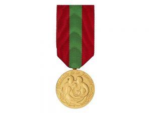 Médaille de la famille 53